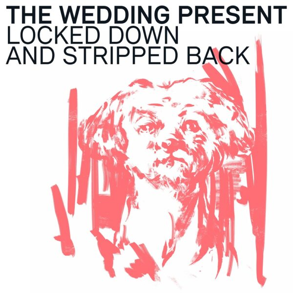 The Wedding Present – Locked Down & Stripped Back