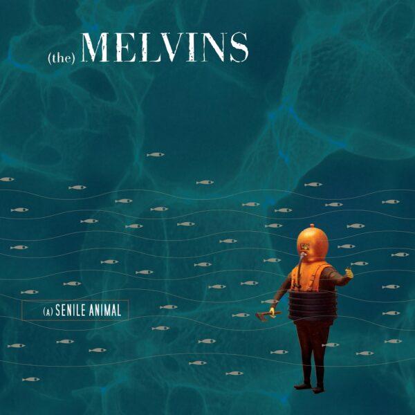 Melvins – (A) Senile Animal