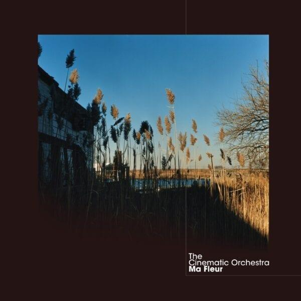 The Cinematic Orchestra – Ma Fleur