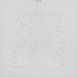 Bon Iver – Bon Iver, Bon Iver (10th Anniversary Edition)