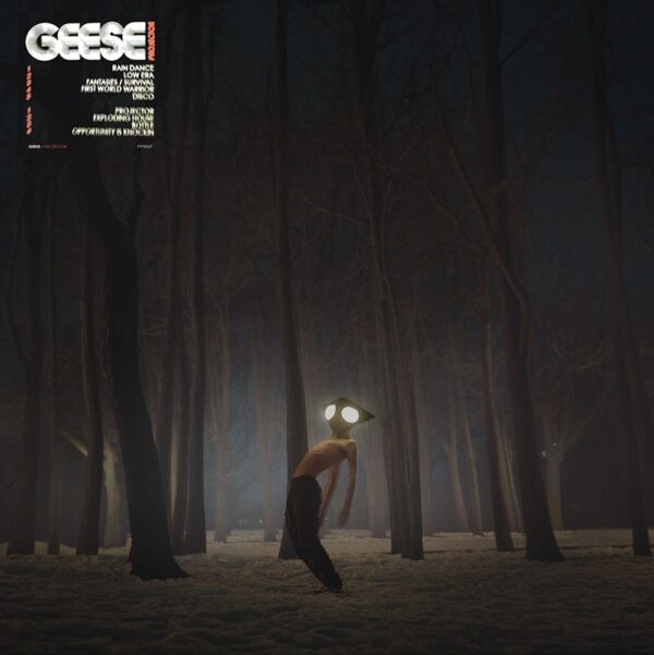 Geese – Projector